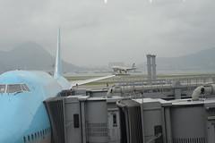 Etihad cargo A330-300 HKG 6-14-17 1