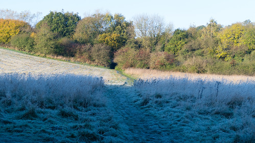 First frost of autumn: Barley Field