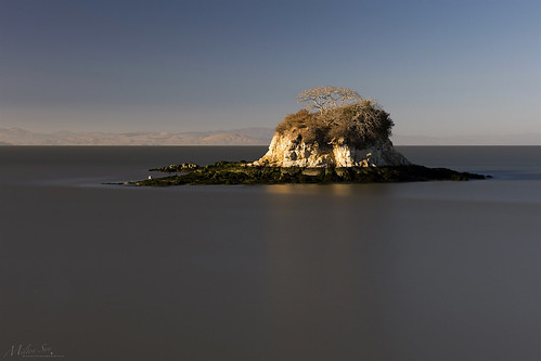 ratrockisland chinacampstatepark sanrafael california longexposure seascape bay ngc bayarea wave ocean shore seaside coast westcoast pacificocean landscape outdoor clouds sky water rock mountain rollinghills sea sand beach cliff nature tree