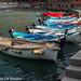 Bootjes in het haventje van Vernazza
