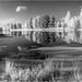Озеро. IR DSC00037-gn by Gobova Natalia