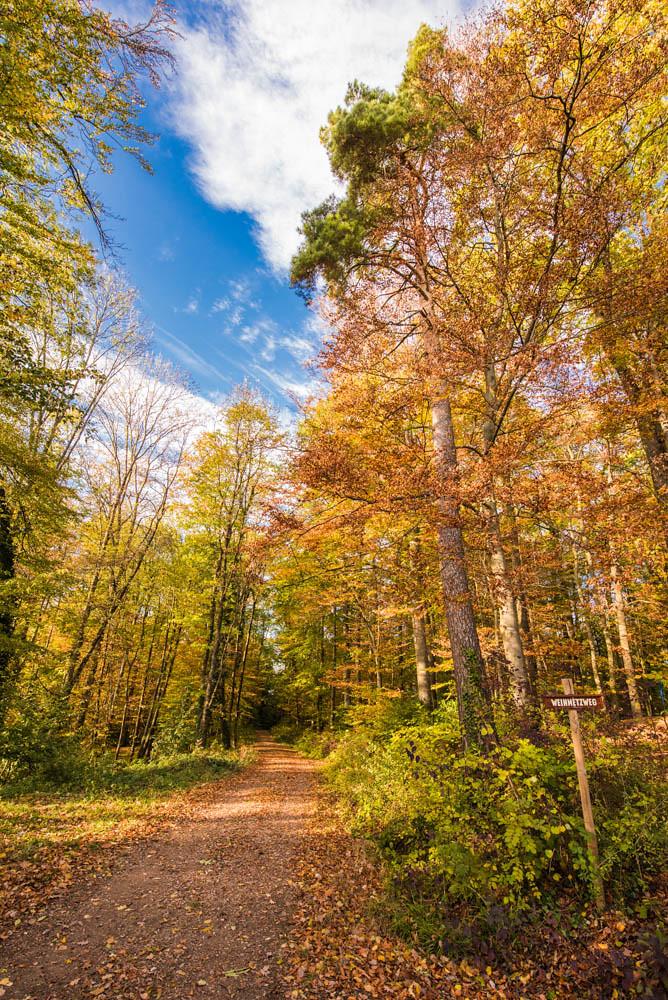 Herbst_Stalten_032