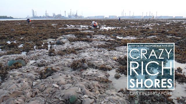 Crazy Rich Shores: Pulau Semakau (North)