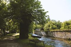Beek en bomen, Auberive