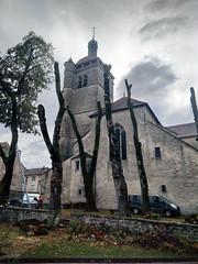 Abattage des tilleuls de l'église d'Orgelet