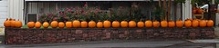 Wall with Pumpkins