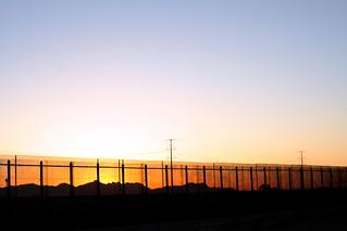 Border Beauty