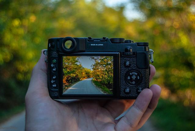 DSC_3689, Nikon D60, AF-S DX Zoom-Nikkor 18-55mm f/3.5-5.6G ED II