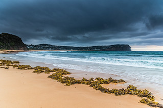 Stormy Seascape and Seaweed
