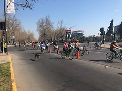 Every Sunday they close off major roads through the city for car-free days
