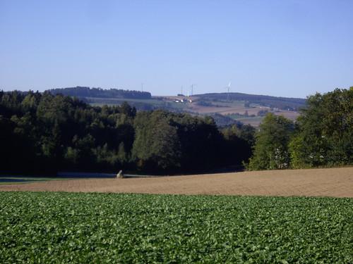 Blick in Richtung Wildenreuth