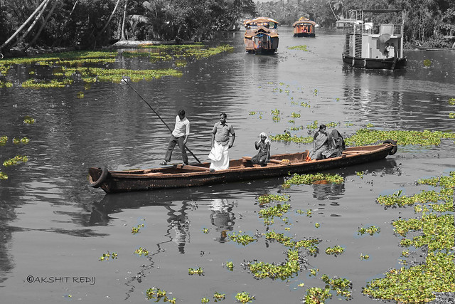 Alleppey, Kerala, Canon EOS 1100D, Canon EF-S 18-55mm f/3.5-5.6 IS II