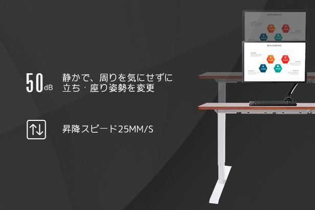 FlexiSpot電動式昇降デスク (5)