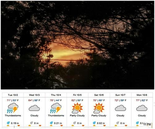 weather weatherunderground sunrise redskyinthemorningsailorswarning trees acrosstheroad temperatures icons