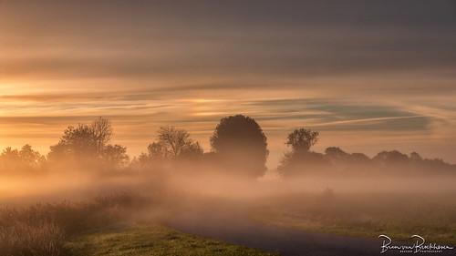 Sundog and Fog