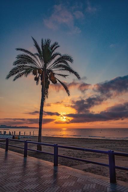 Beach and promenade in Alicante