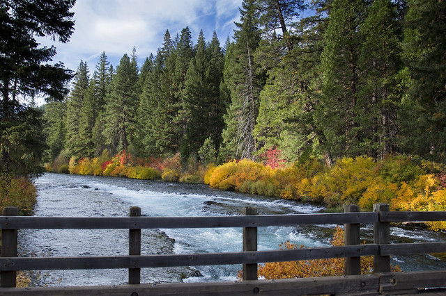 Fall color at Bridge over Metolius River, Oregon