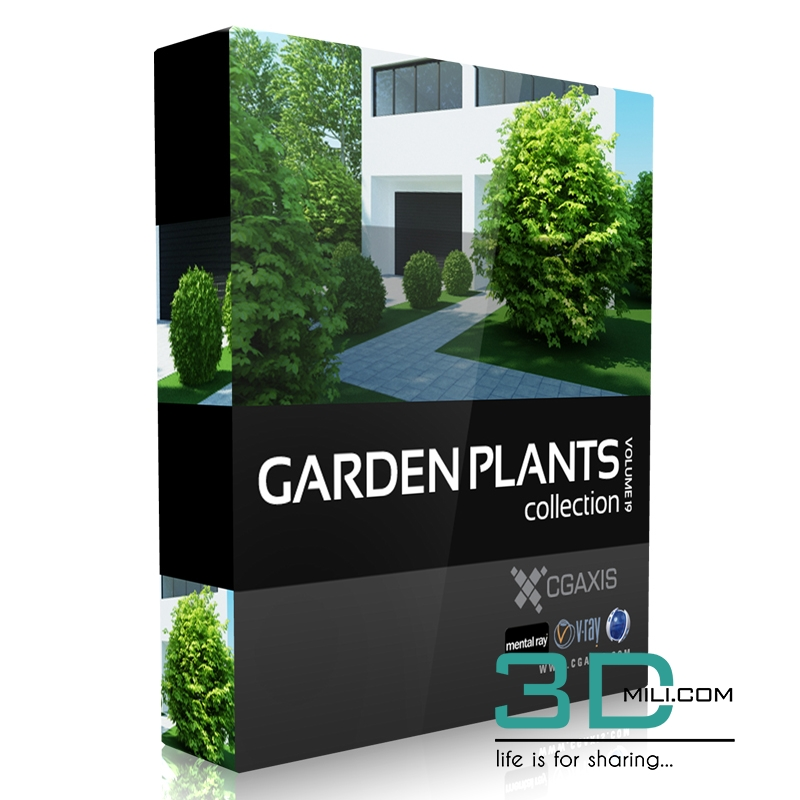 CgAxis Volume 19: Garden Plants - 3D Mili - Download 3D Model - Free