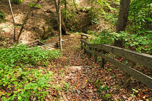 Jew's Harp Spring Trail - 03