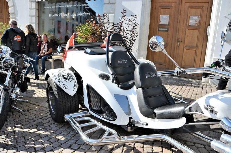 Harley Davidson HESO Tag 30.09 (18)