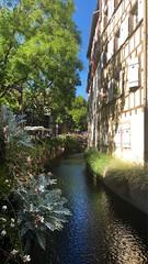 Colmar: Place de l'Ancienne Douane