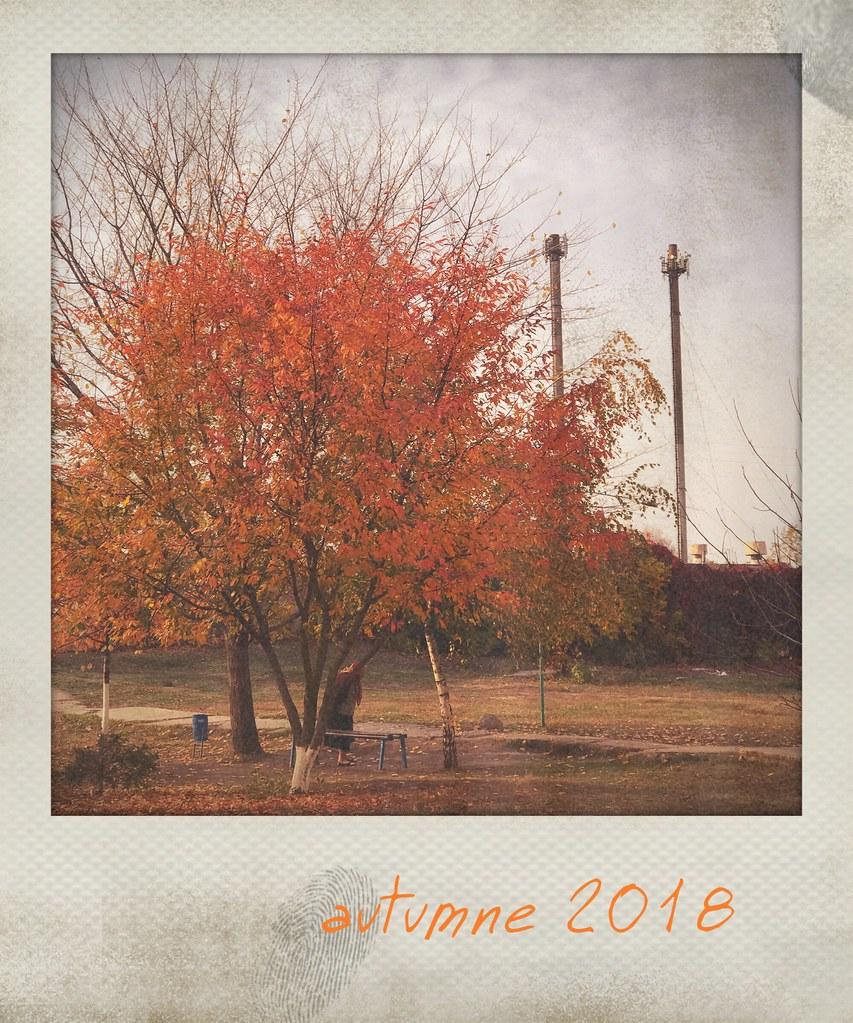 ***autumn memories***🍂🔲