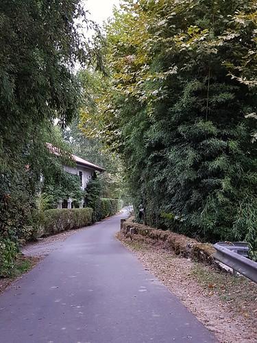 Saint Laurent de Gosse, Landes: route le long de l'Adour