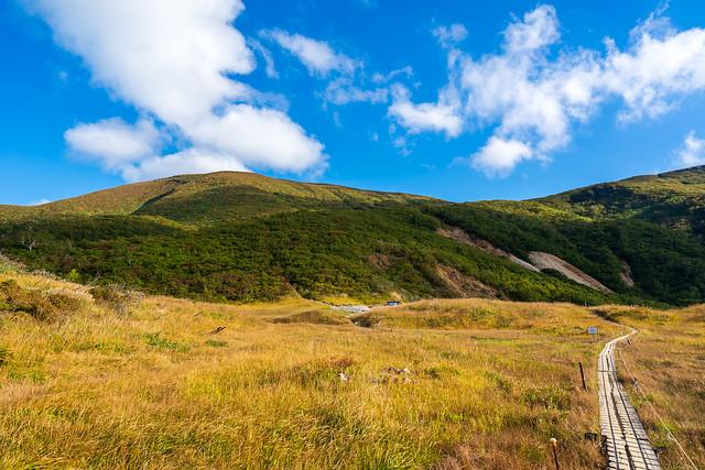 草紅葉と栗駒山