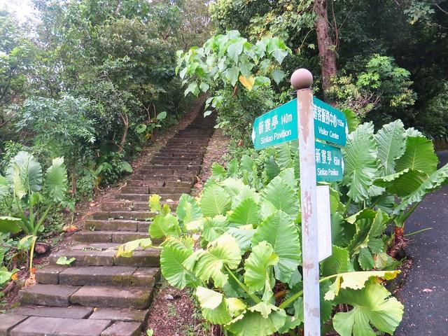 仁山植物園7