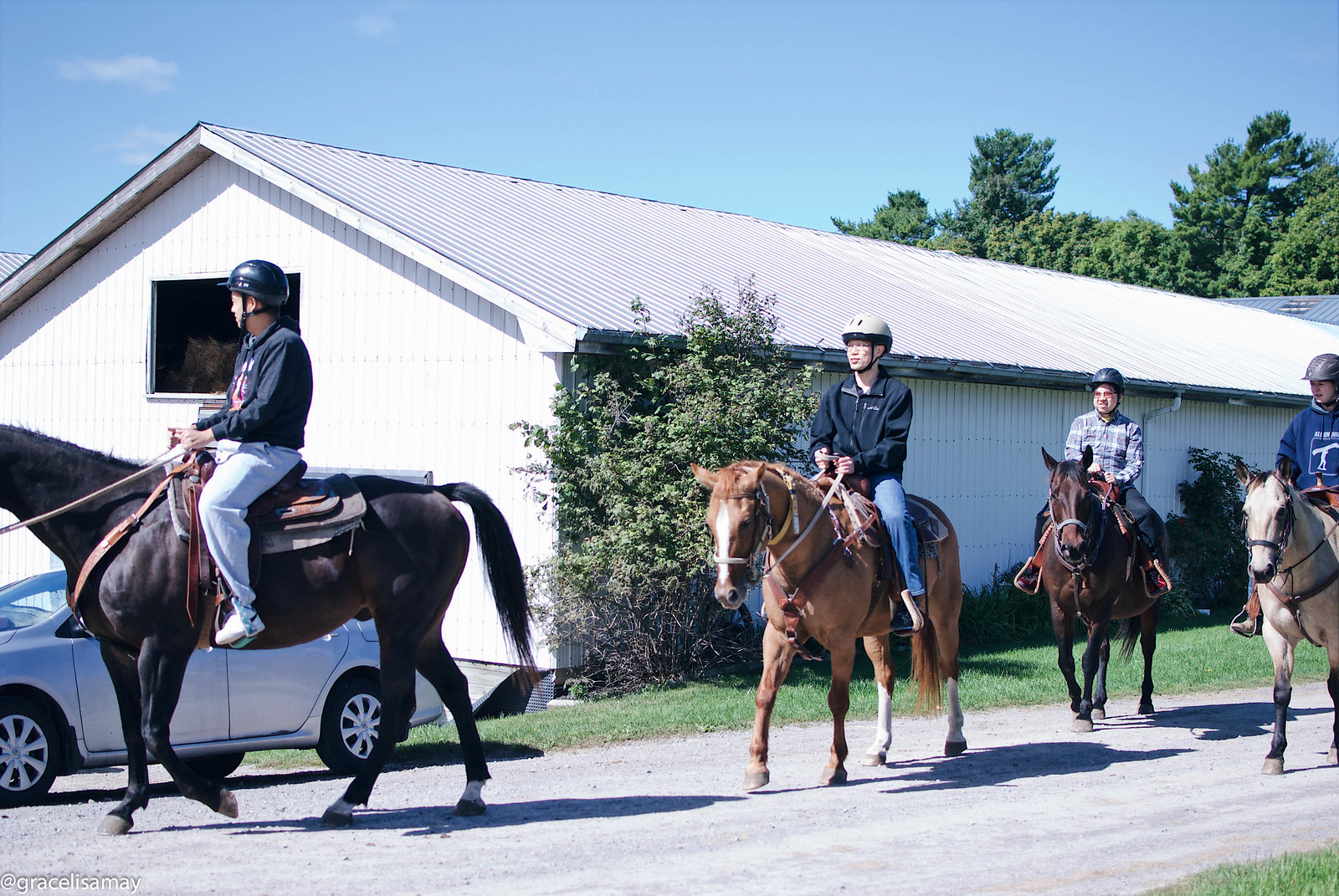Ontario: Horseback Trail Riding in Port Hope