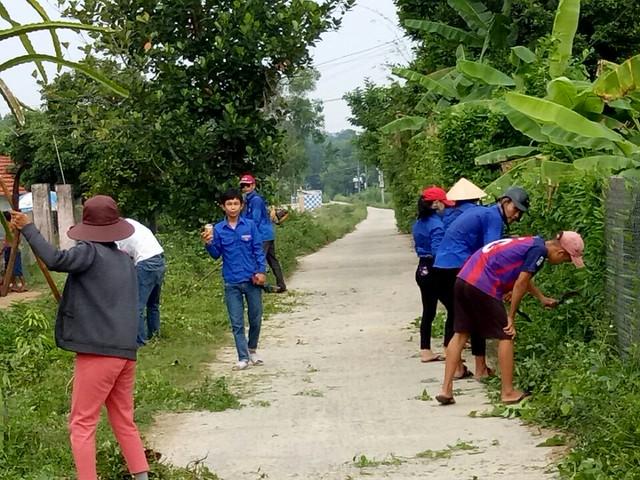 Thanh niên Tam Đại tham gia bảo vệ môi trường