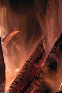 Le feu et nous, 20 000 ans d'amour