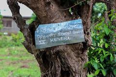 Sierra Leone Mushroom School-61