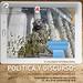 III Coloquio Internacional Política y Discurso: Representaciones Contemporáneas celebrado en el Instituto Universitario de Análisis y Aplicaciones Textuales de la Universidad de Las Palmas de Gran Canaria los días 27, 28 y 29 de septiembre de 2018