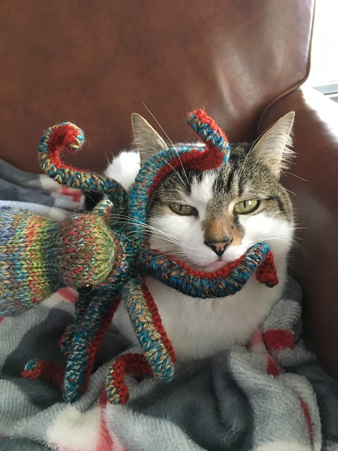 Penny loves the octopus