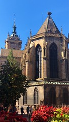 Colmar: Cathédrale Saint Martin