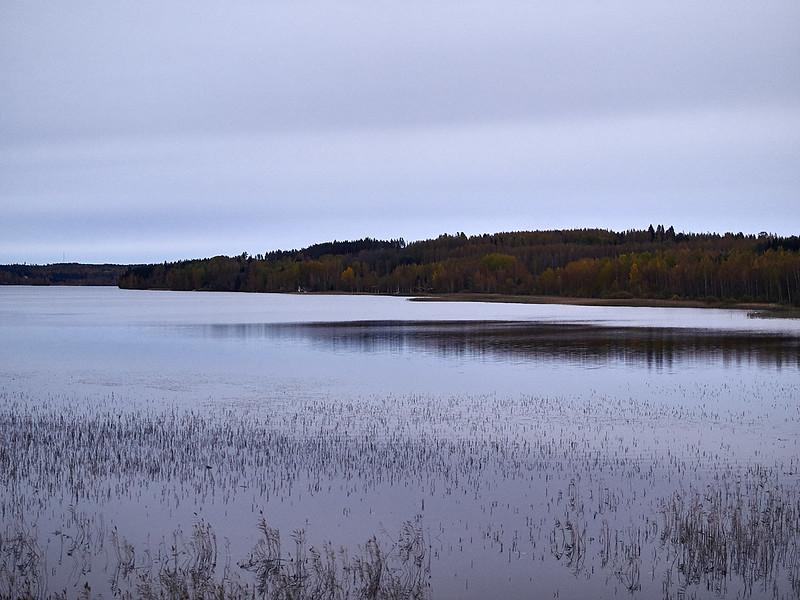 Joensuu-Helsinki (Autumn 2018)