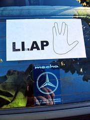 LLAP_IMG_0601