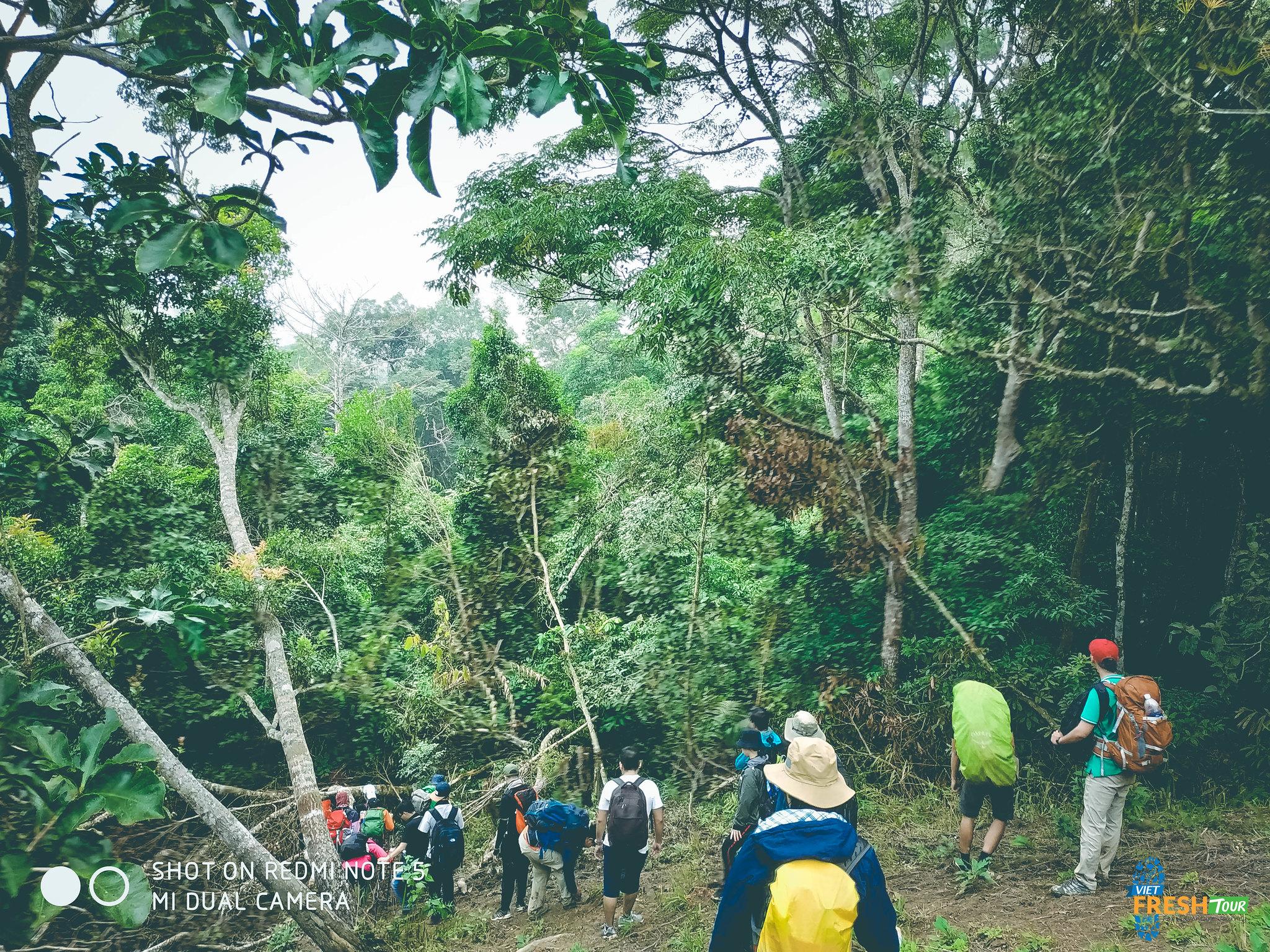 Trekking Tà Năng Phan Dũng