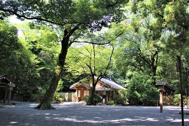 tsukiyominomiya012