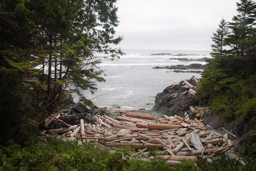 Canada-Ucluelet-WildPacificTrail15