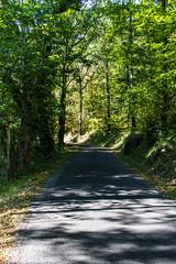 Sentier du Plan d'Eau de Stagnes - Photo of Sabadel-Latronquière