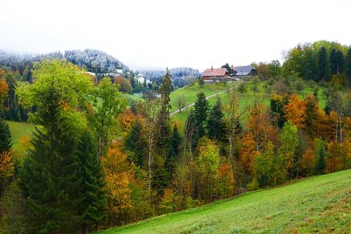 Herbst 2018 (Bucholz, Roschbach)