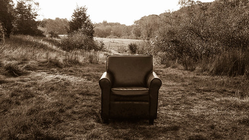 easton massachusetts unitedstates us field woods chair sepia
