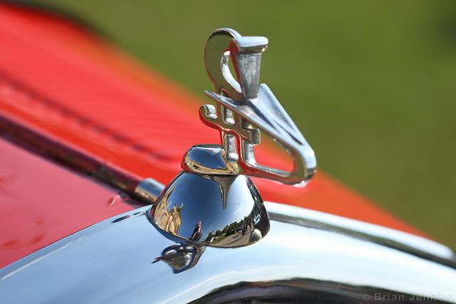 Wolseley Hornet Special Bonnet Adornment
