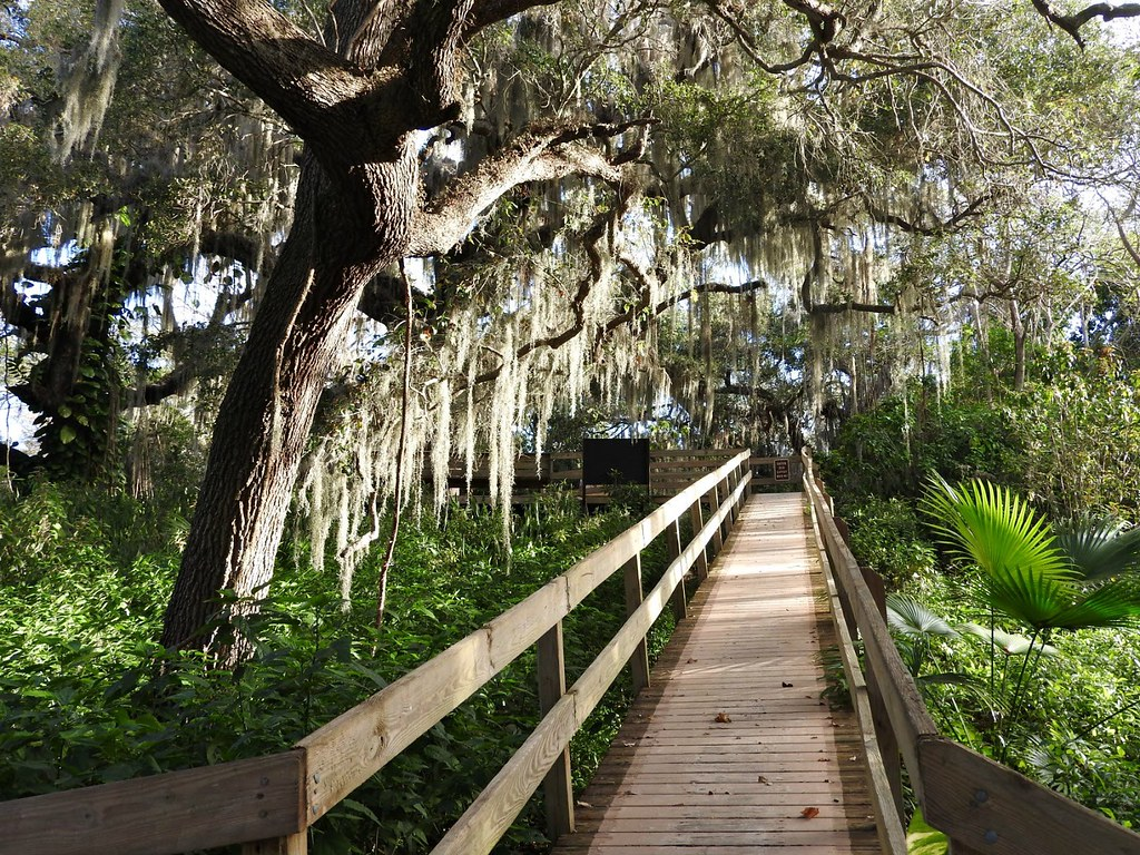 Plant List - Emerson Point Preserve - Palmetto | Florida
