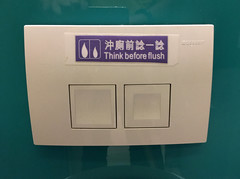 Think Before Flush