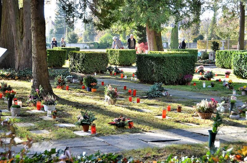 Cemetery 01.11 (2)