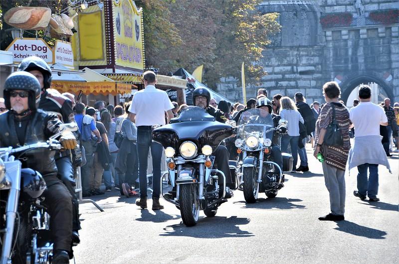 Harley Davidson HESO Tag 30.09 (6)