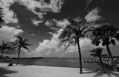 Key West 3882 BW
